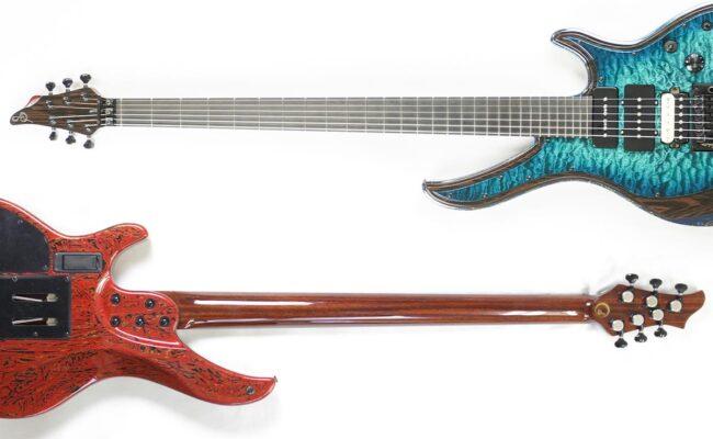ながーいネックのギターとは?